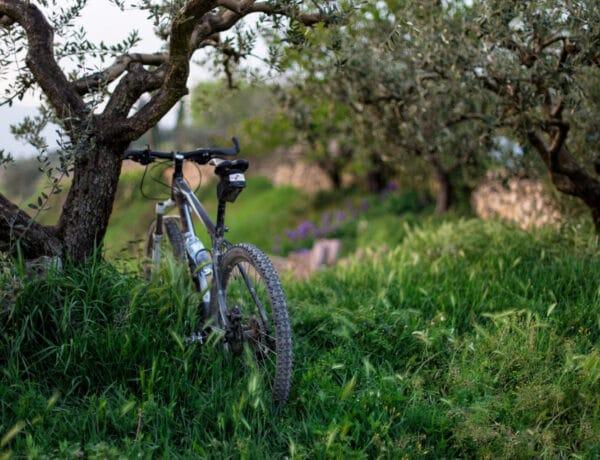 Az 5 legklasszabb bicikliút Magyarországon – Varázslatos környezet!