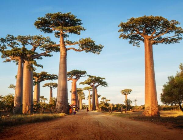 6 hely a világban, ami néhány évtizeden belül eltűnhet a Föld felszínéről