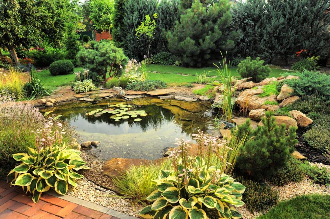 Apró, de gyönyörű kerti tavak, amiknek nálad is lesz helye