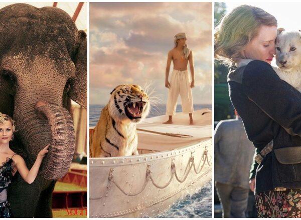 Az 5 legjobb állatos film 2000 után – szerintünk