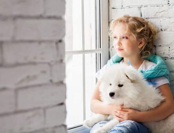Ilyen hatással van a gyermekek fejlődésére az, ha van kutya a háznál