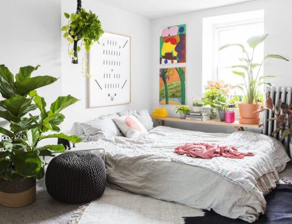 Jobban szeretnél aludni? Ezeket a növényeket tartsd a hálószobádban!