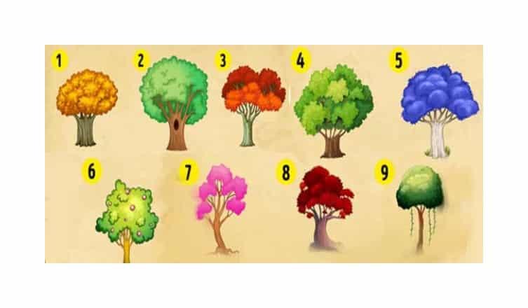 Melyik fát ültetnéd el a kertedbe? A válaszod rólad és a jövődről is árulkodik