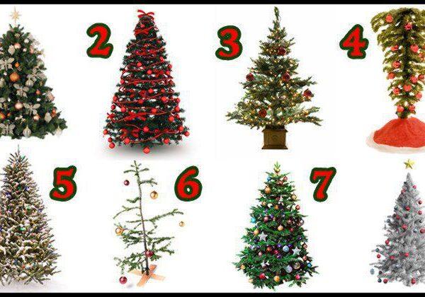 Melyik karácsonyfát választod? Ilyen különleges személyiségjegyed van