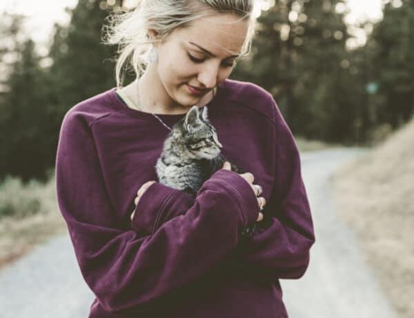5 értelmetlennek tűnő dolog, amit a cicád csinál – és amit valójában jelent