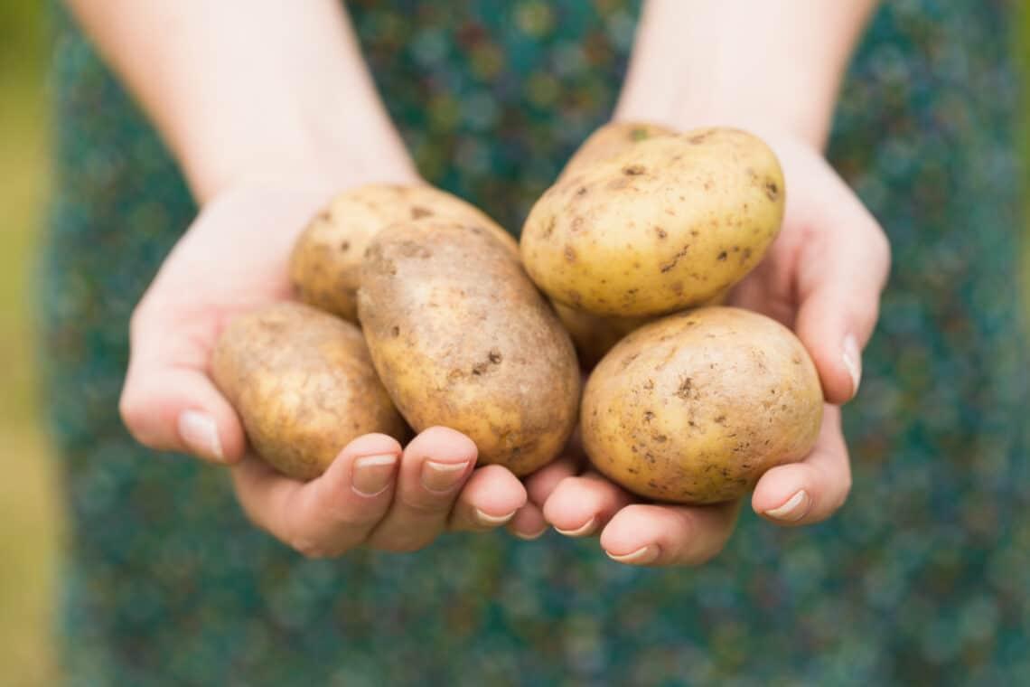 5 étel, amit soha ne fogyassz nyersen, mert nagyon káros a szervezetedre