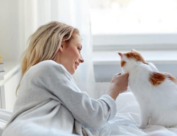 5 gondolat, amit azonnal megértesz, ha van macskád