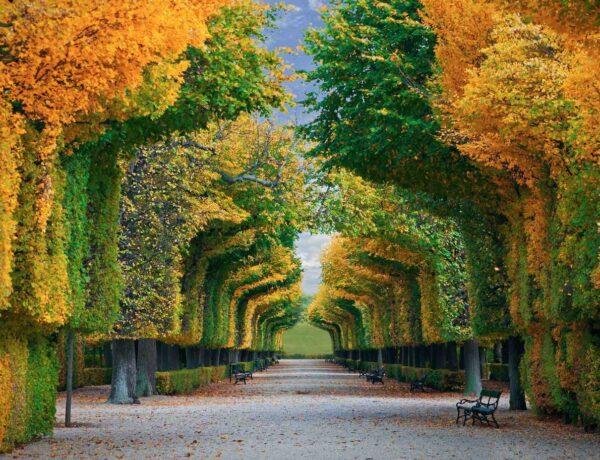 5 közeli nagyváros, aminek egyszerűen jobban áll az ősz