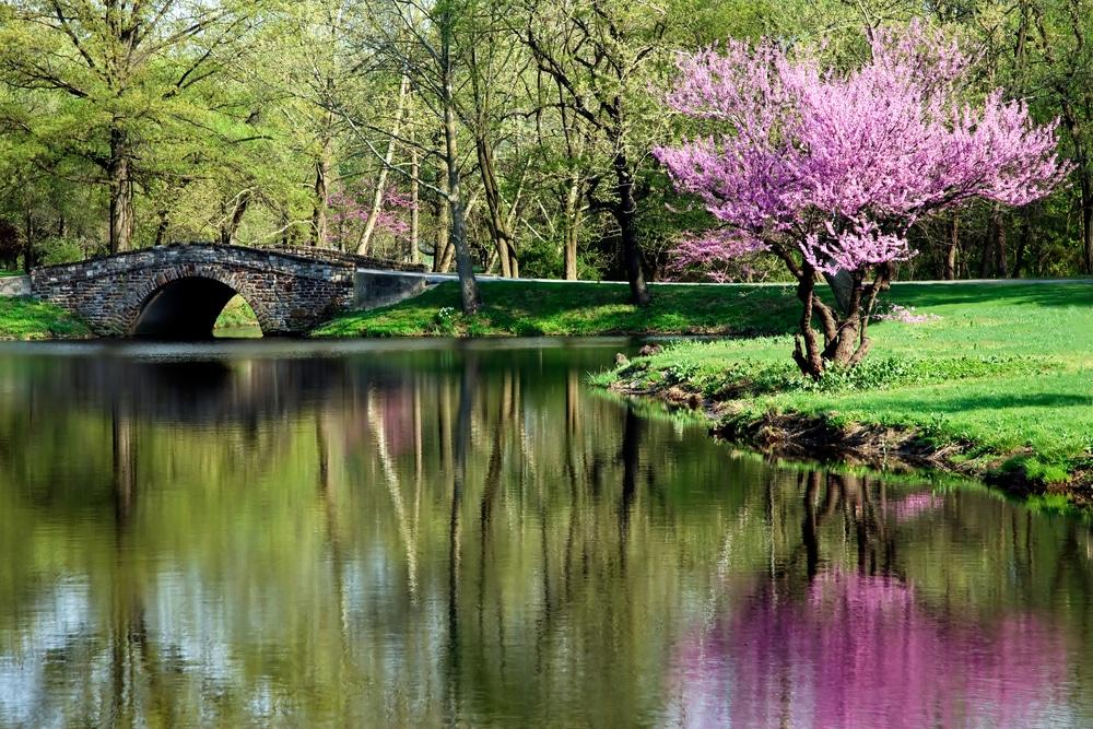 5 kirándulóhely Magyarországon, ami tavasszal a legszebb!