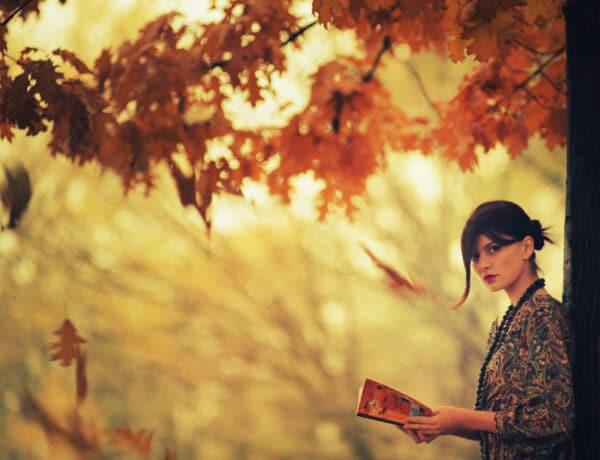 5 megindító könyv: Bien novemberi könyvajánló