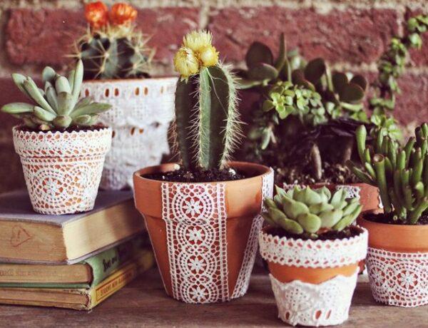 6 csináld-magad kaspó, amivel különlegessé teheted a kerted