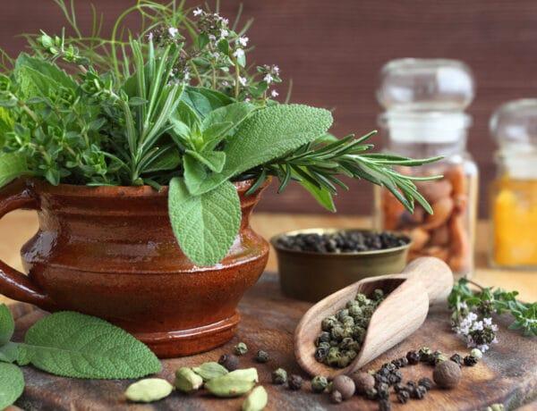 6  fűszer- és gyógynövény, amiket télen is gondozhatsz az otthonodban