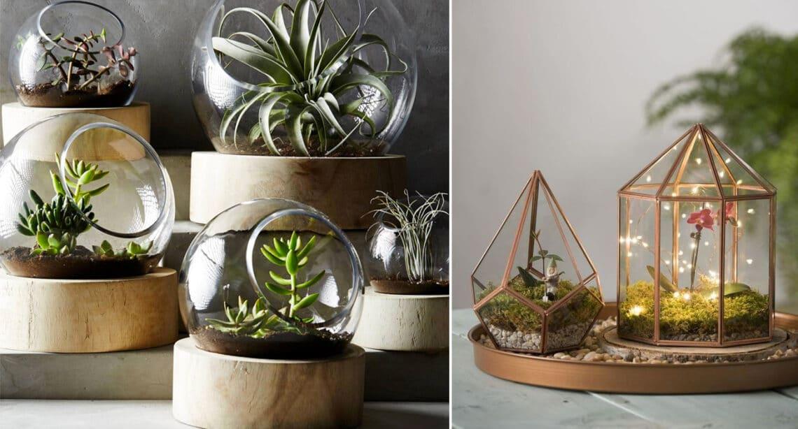 5+1 gyönyörű mini kiskert a lakásban, amit te is elkészíthetsz