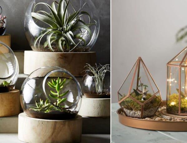 6 gyönyörű mini kiskert a lakásban, amit te is elkészíthetsz