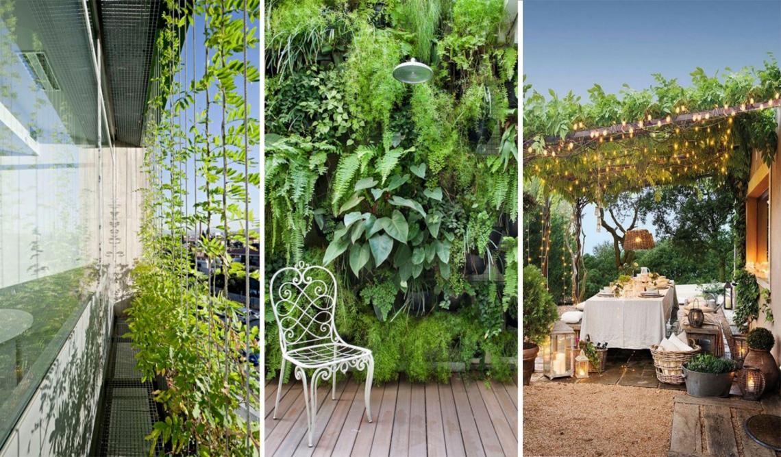 7 élő kerítés, amivel igazán privát lesz az udvar