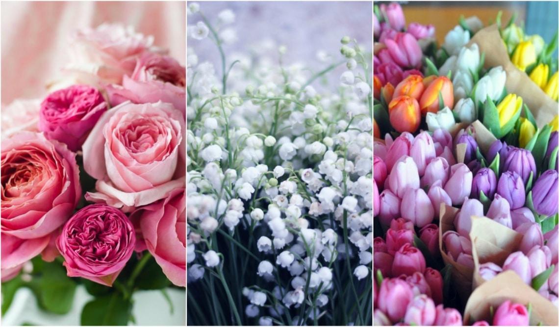 A legszebb anyák napi virágok és jelentésük