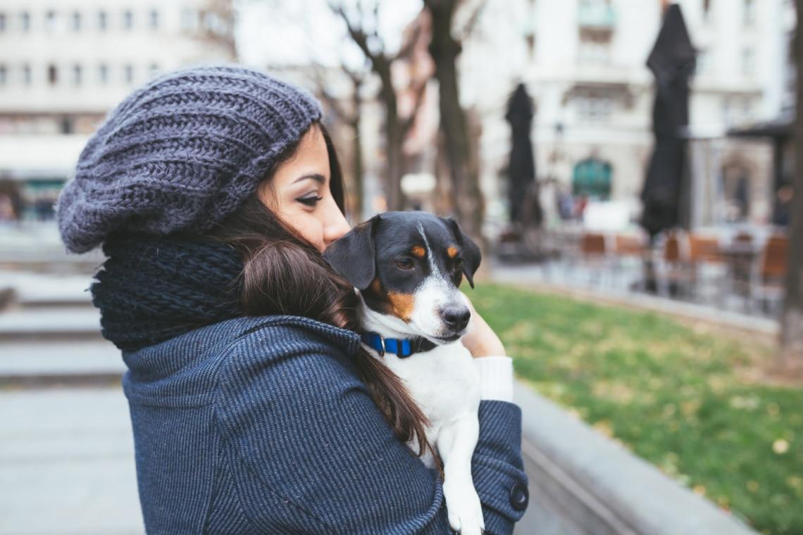 A számtalan előnye annak, ha állatmenhelyről fogadsz örökbe kutyát