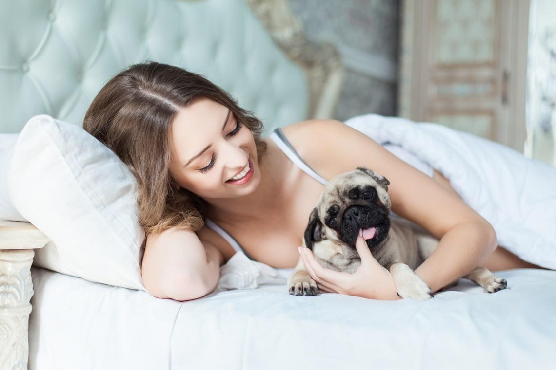 Hiába imádod, ne tedd! 5 okból is káros, ha a kutyáddal alszol