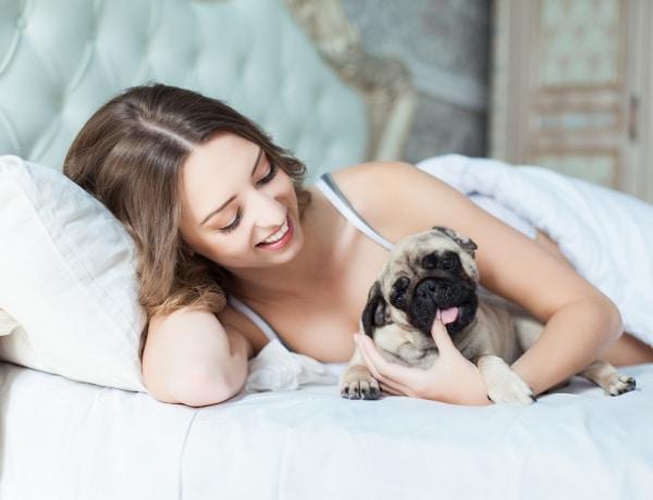 A világ egyik legjobb dolga, de inkább mégse aludj együtt a kutyáddal