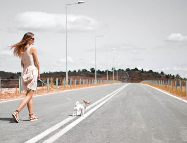 Az egyedülálló nők a legboldogabbak – egy boldogságkutató szerint