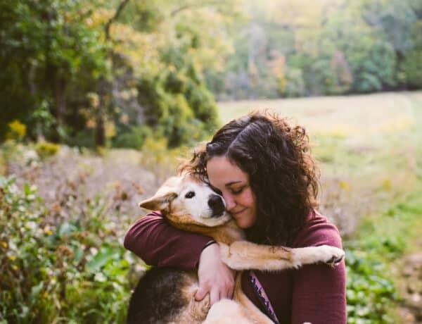 Csillagjegyedből megtudhatod, melyik kutyafajta illik tökéletesen hozzád