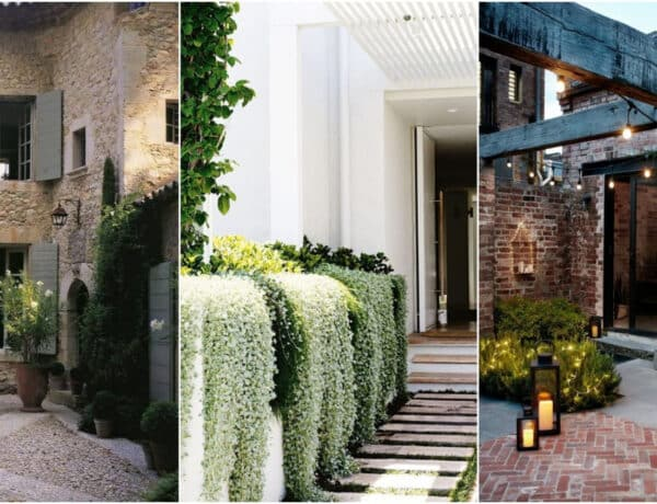 Dekoratív kerti megoldások – Varázsold buja hangulatúvá a kertet!