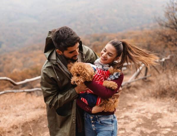 Ebből tudhatod, hogy a kutyád nagyon boldog és kiegyensúlyozott életet él veled