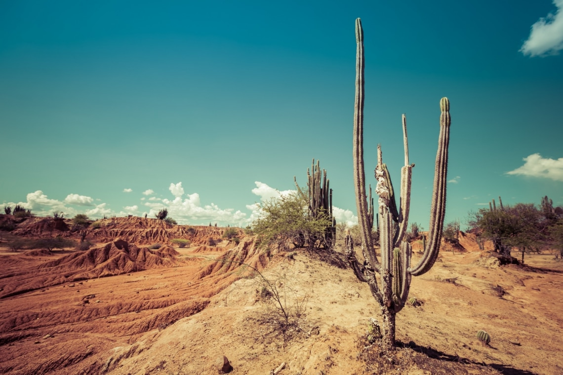 Egy fantáziadús személyiségteszt – Te mit látsz a képzeleted sivatagában?