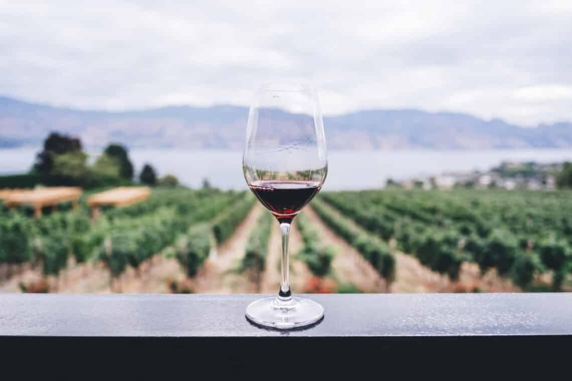 Ez a borfajta illik a leginkább hozzád – zodiákusod szerint