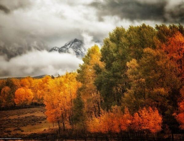Ezek a legszebb őszi tájak a közelben