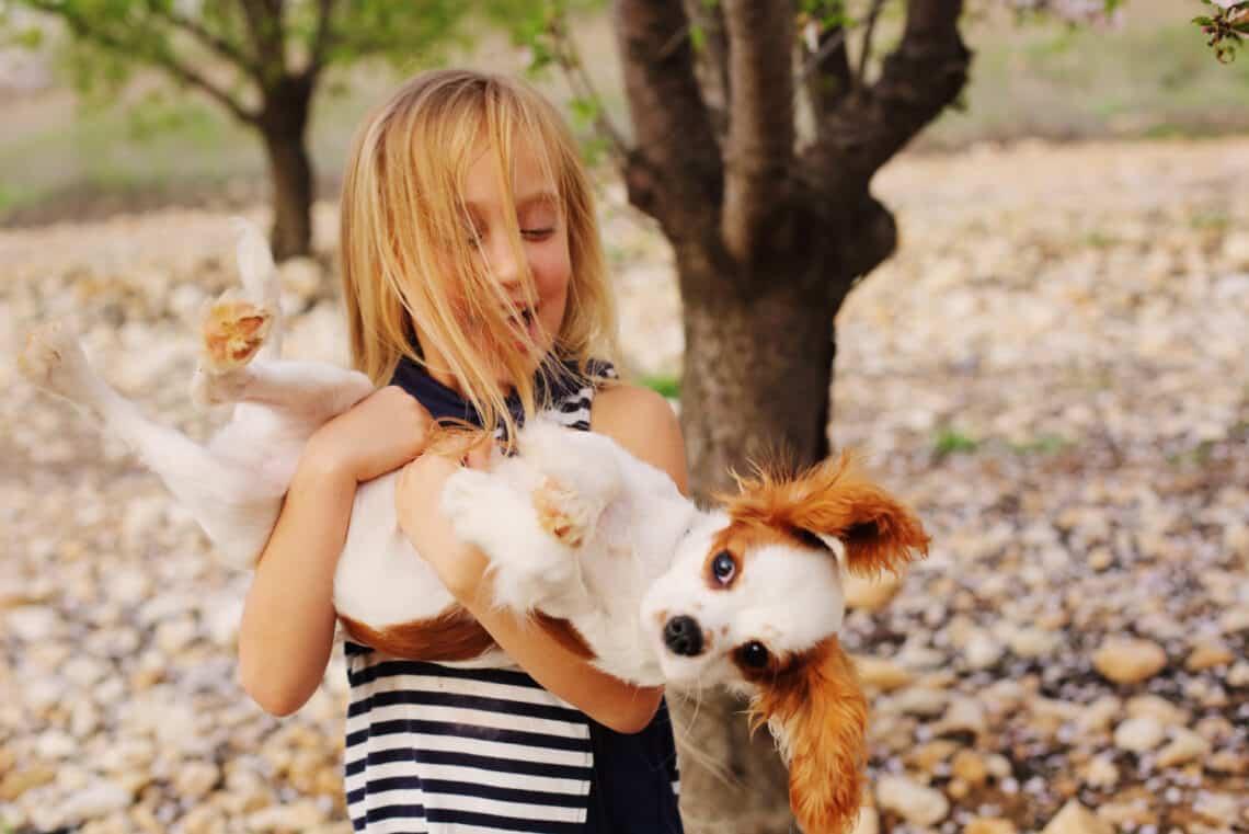 Ezek közül a kutyafajták közül érdemes választanod, ha kisgyerek is van a családban