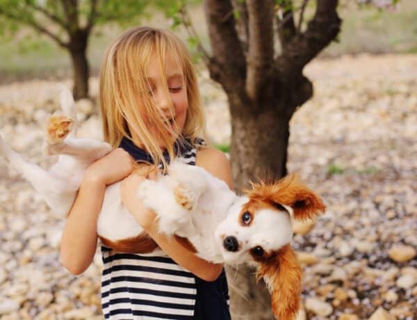 A 9 legrosszabb kutyaszokás és ahogyan leszoktathatod róla