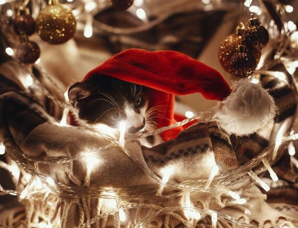 Minden idők 4 legszebb karácsonyi reklámja