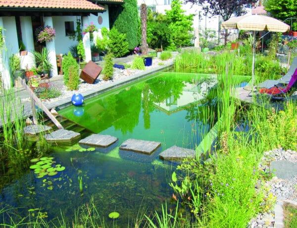 Ezekben te is csobbannál! – A legszebb természetes stílusú medencék