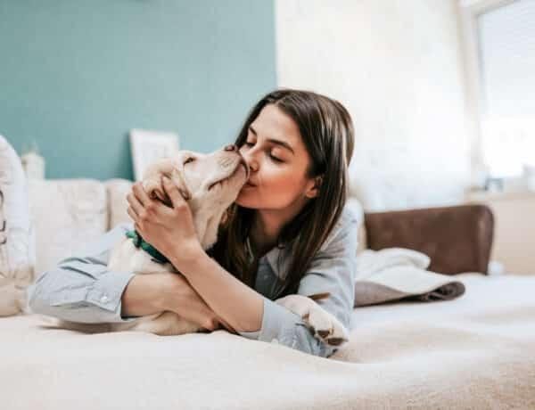 Ezt a 3 dolgot ne csináld a kutyáddal, mert csak idegesíted vele