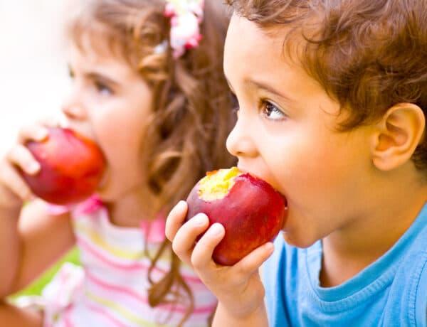 Gyerek étkezési szabályok, amelyeket minden szülőnek ismernie kell