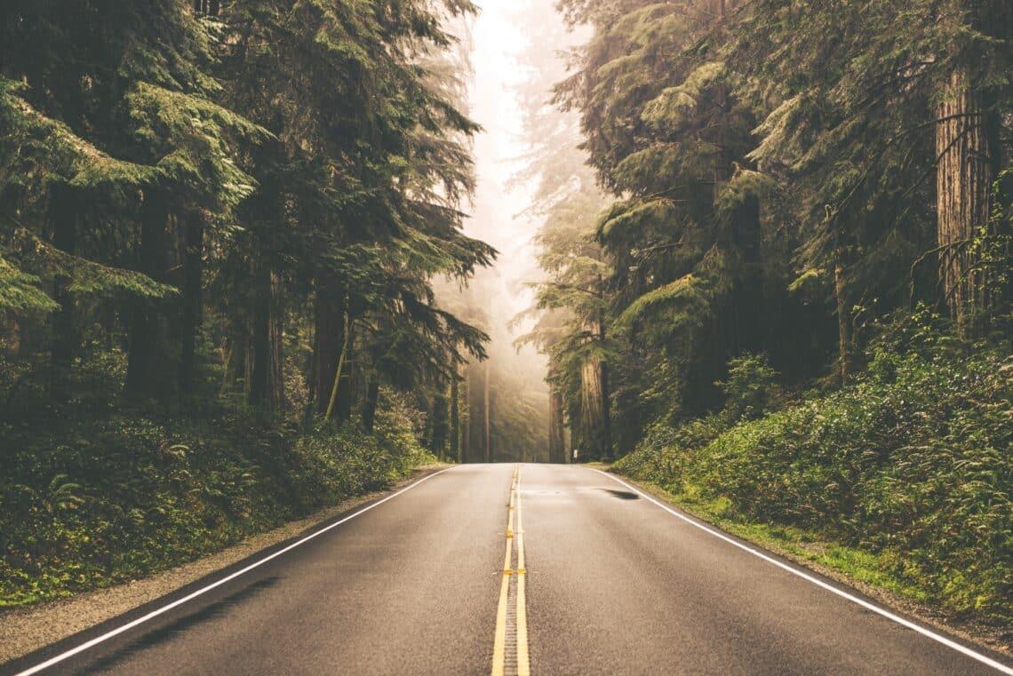 Gyors személyiségteszt – képzelj el egy utat, megmondom, ki vagy