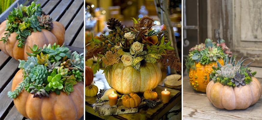 Imádnivaló töklámpás, virágtartó és recept ötletek sütőtökkel