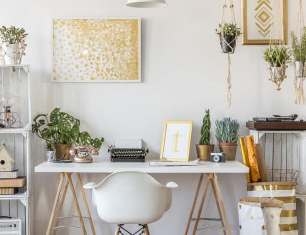 Készítsd fel a szobanövényeidet is a tavaszra néhány egyszerű lépéssel