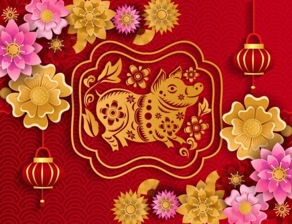 Kínai 2019-es horoszkóp – mit tartogat számodra a Disznó éve?