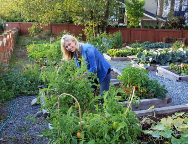 Kertészkedés a nagyvárosban? Csatlakozz te is egy közösségi kerthez!