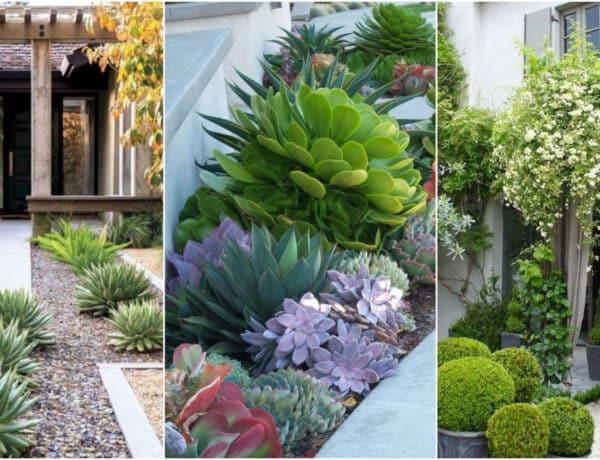 Kevés munkával szép kert – 4 kertrendező tipp, amivel elérheted