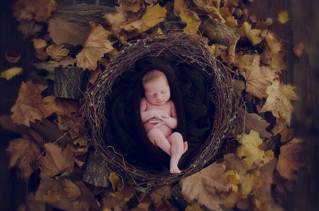 Korán jöttem, de ez nem számít! – Három koraszülött baba története