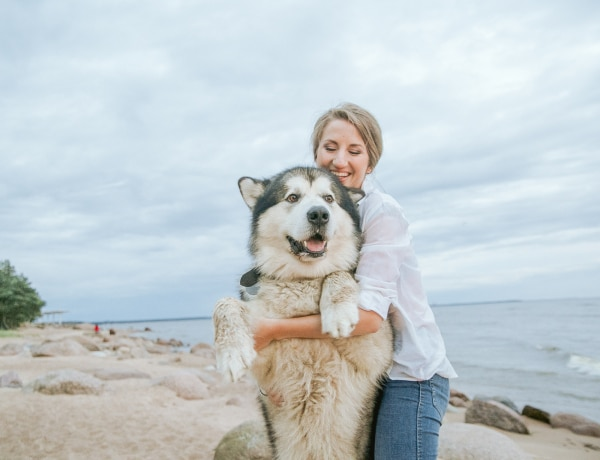 Koronavírus: Veszélyes a háziállatokra a betegség?
