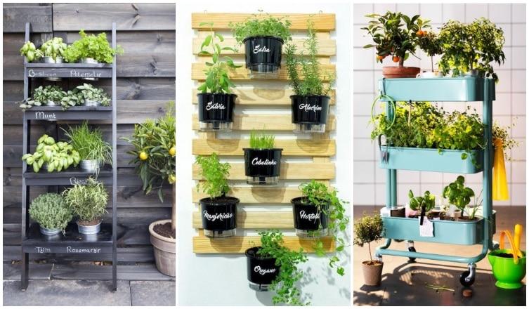 Lenyűgöző mini fűszerkertek a teraszra, balkonra