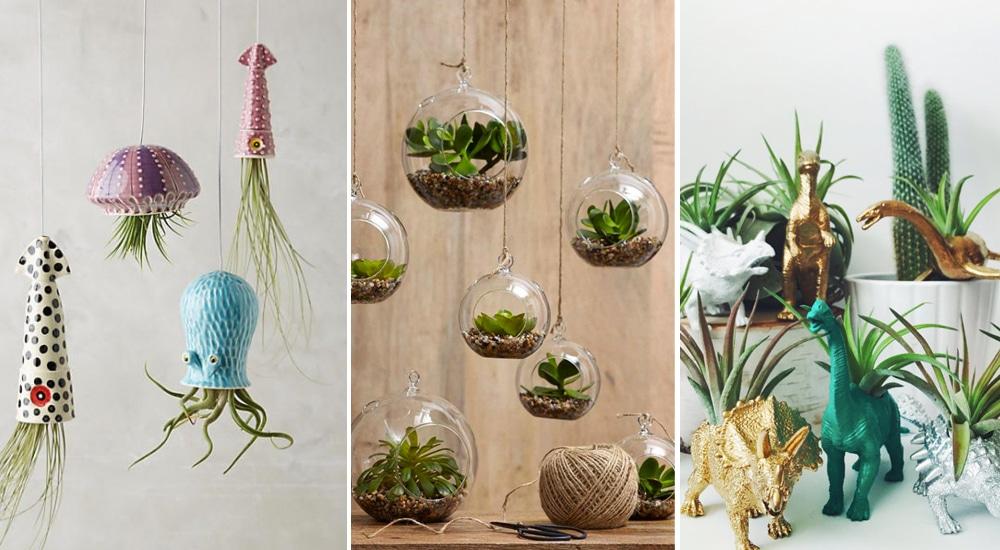 Mókás és aranyos házi növényültetési ötletek