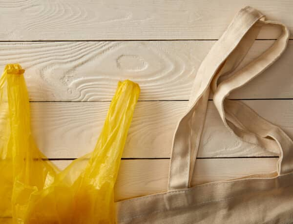 Ma van a zacskómentes világnap: helyettesítsd a leglassabban lebomló műanyagokat