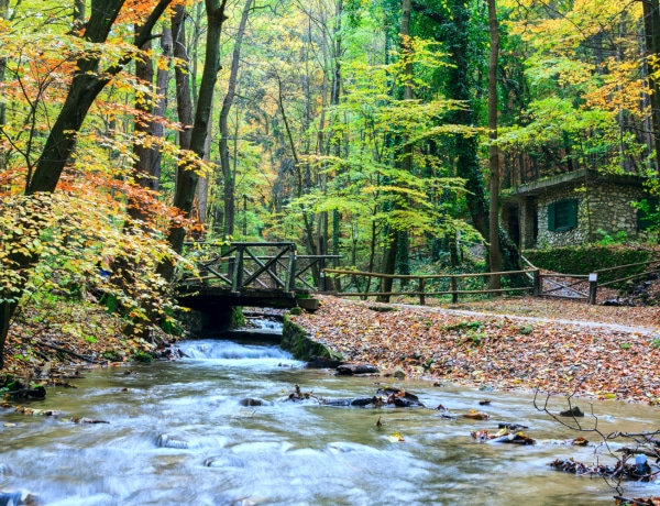Magyarország 6 legszebb vízesése
