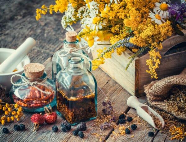 Megfáztál? 8 gyógynövényes kúra, ami garantáltan beválik