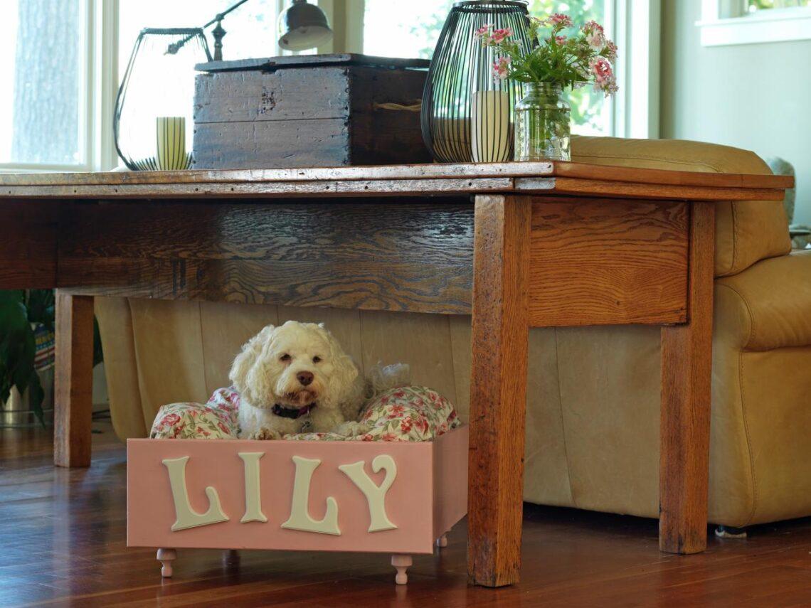 Nálad hol alszik a kutya? A legszebb csináld-magad kutyaágyak